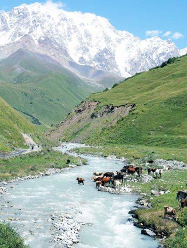 Gruzja, widok na rzekę i góry Kaukaz