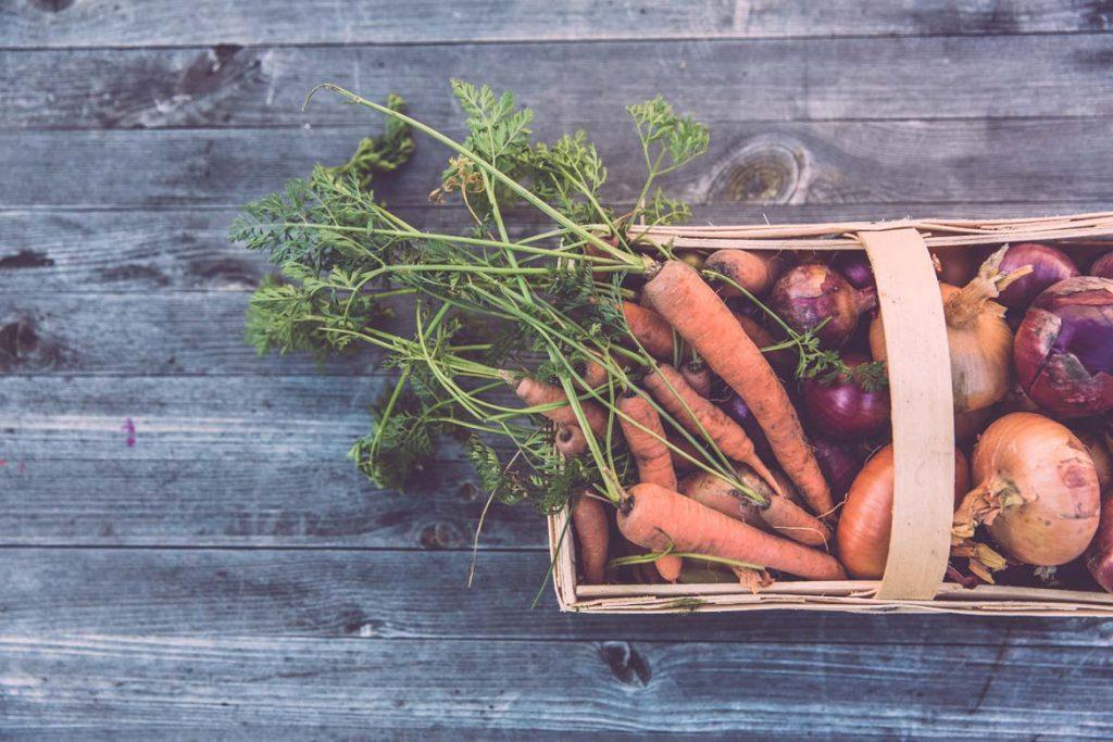 Koszyk pełen warzyw z własnego ogródka